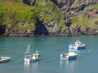 Fishing boats in Port Isaac harbour