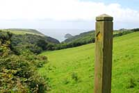 Path from Trebarwith Valley Nature Reserve